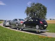fahrzeugtransporter-4